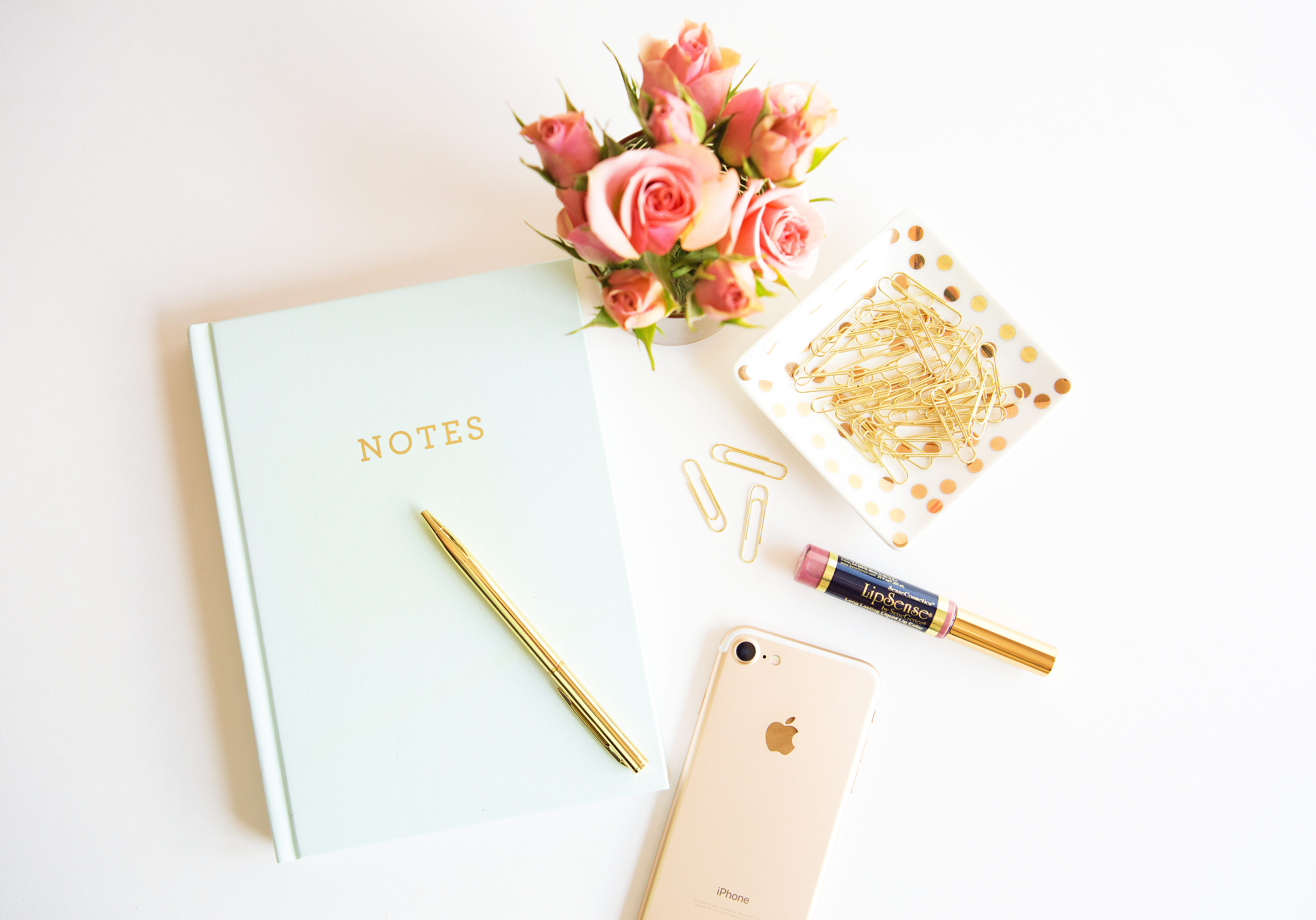 Product Shot LipSense Notebook Blog pic